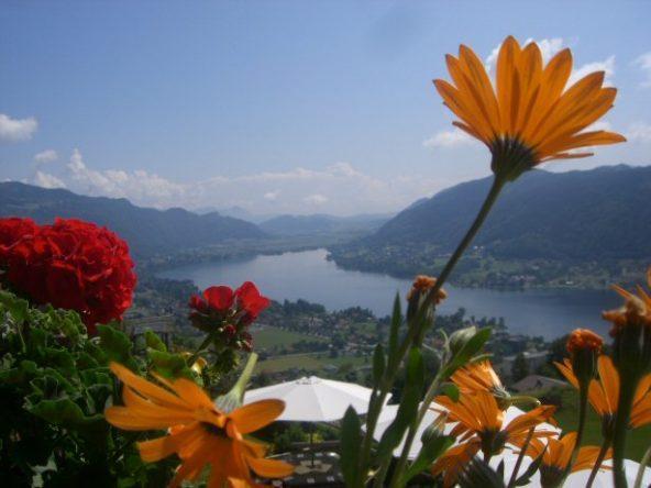 Blick durch Blumen auf den Ossiacher See