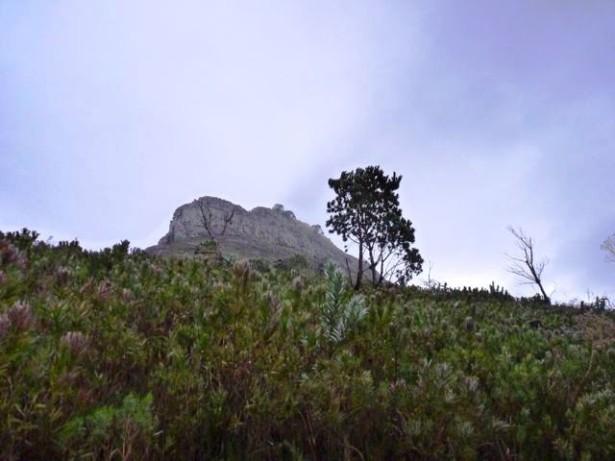Cape Town 4jpg