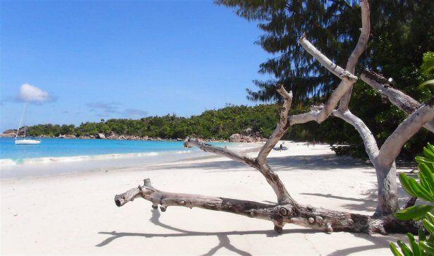 Der Strand Anse Lazio auf Praslin, Seychellen