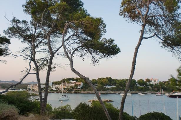puravida-resort-ausblick-6