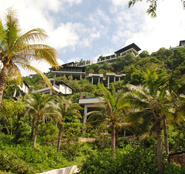 Palmen und einzelne Villen auf einem Hügel