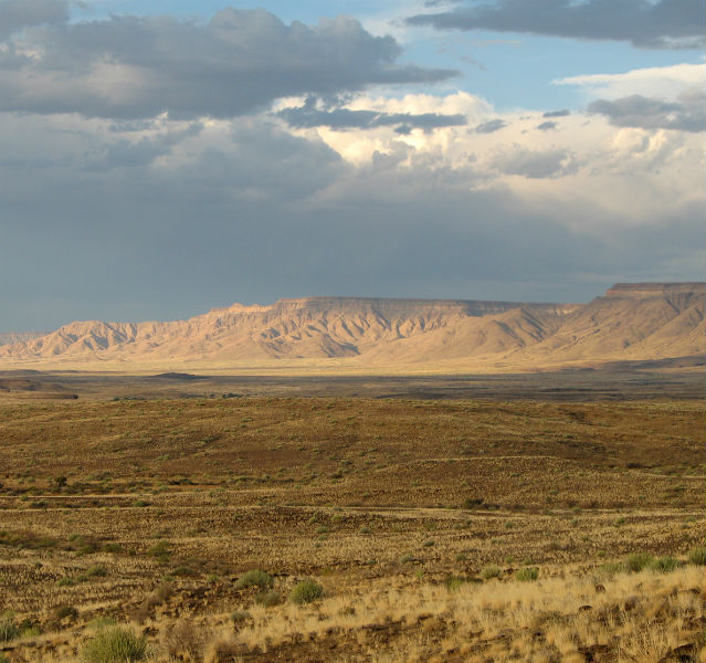 Grüne Wüste