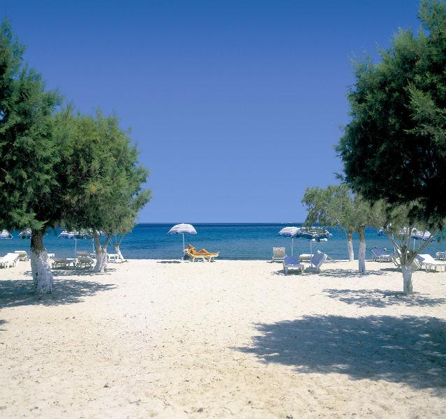 Weißer Strand mit Bäumen