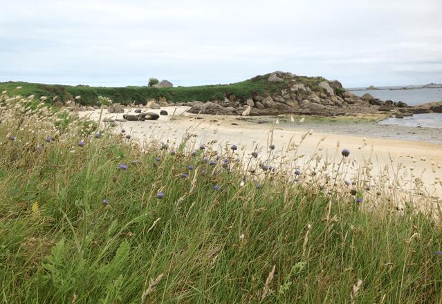Strand in der Bretagne