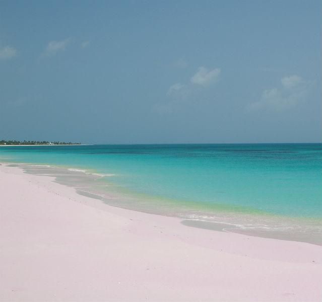 """Reiner Puderzucker: der """"Pink Beach"""" von Barbuda"""