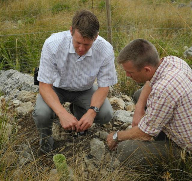 Umweltexperte Harald Zeiss (links) und ein mallorquinischer Förster begutachten Setzlinge im Wiederaufforstungsprojekt von TUI auf Mallorca