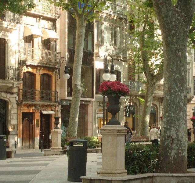 Fast schon Sommer in Palma und doch steckt die Ruhe des Winters noch in den Platanen des Born, der Hauptshoppingmeile in Mallorca Fotos (5): Tapper