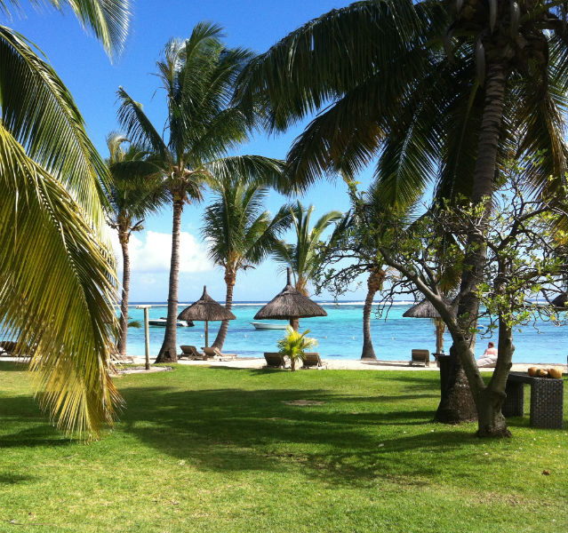"""Palmenstrand """"Le Morne"""" auf Mauritius"""