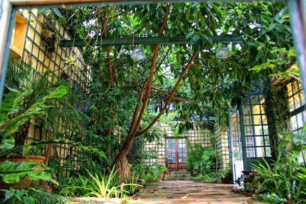 Der Jardin Serre de la Madone in Menton