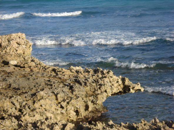 Barbados Bridgetown Felsen