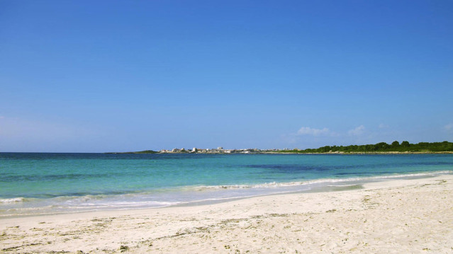 Der Strand von Es Trenc - der schönste der Insel Fotos (4): TUI