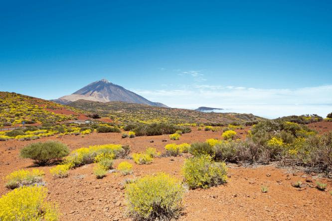 Das Wahrzeichen der Insel - der Berg Teide
