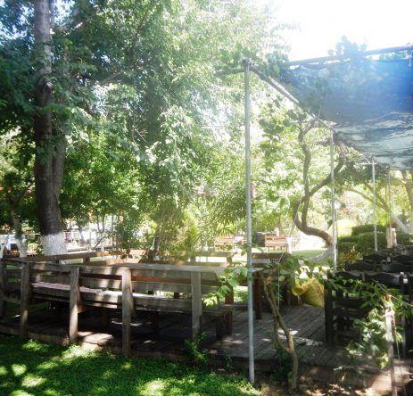 Restaurant Dalyan