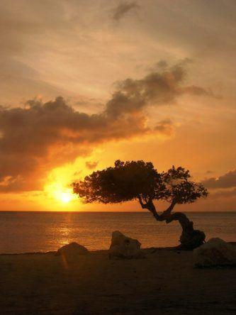 © Sunset   ATA
