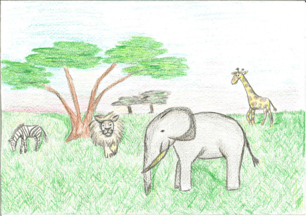 Safariurlaub für Mela