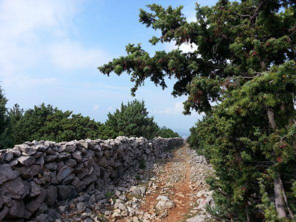 Über Stock und Stein in Kroatien