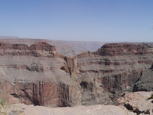 Adler im Grand Canyon