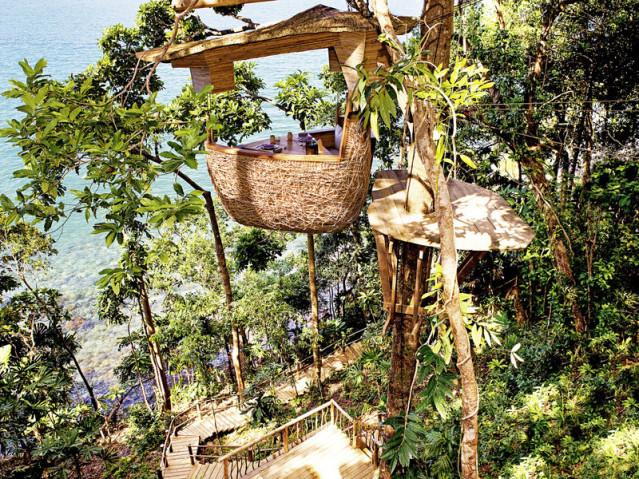 Tree Pod Dining