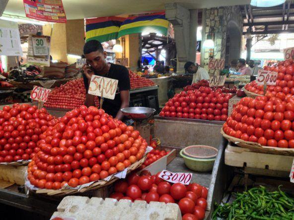 Love Apples Tomaten Mauritius