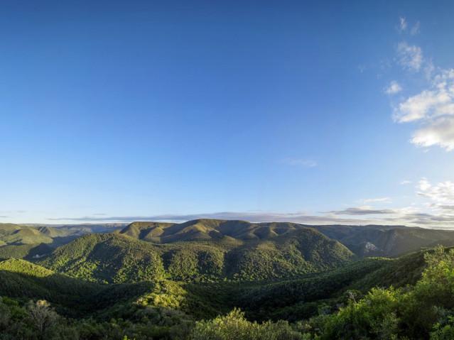 Blick von der Terrasse des Camp Fig Tree
