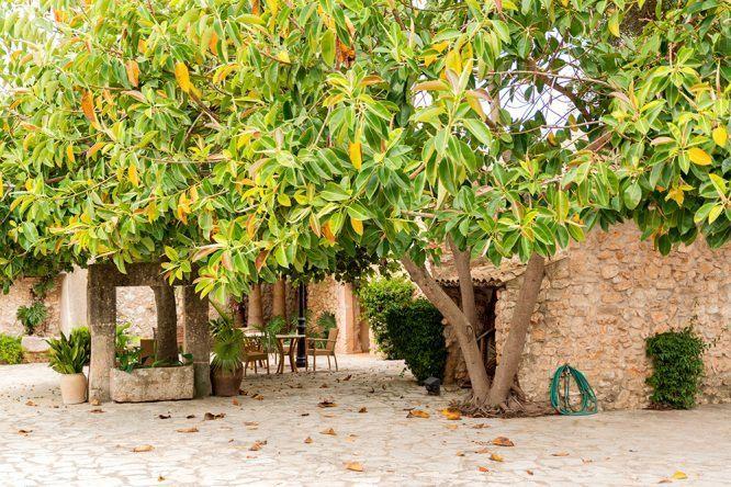 Terasse Wasserrad im Viverde Sa Bassa Rotja Mallorca