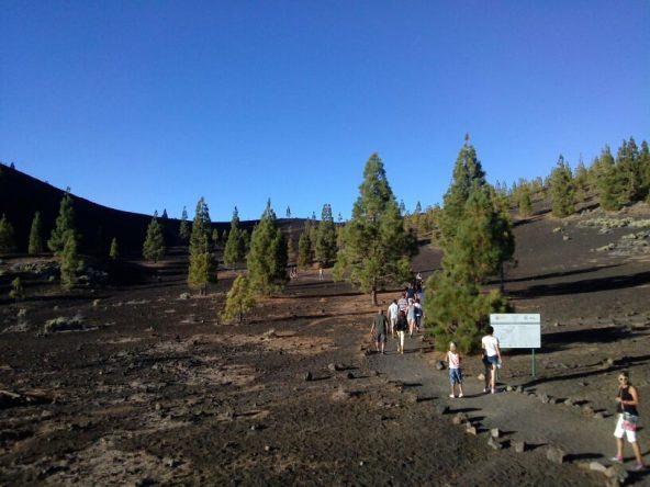 Vulkanlandschaft Teneriffa