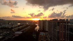 Sole on the Ocean Miami Florida