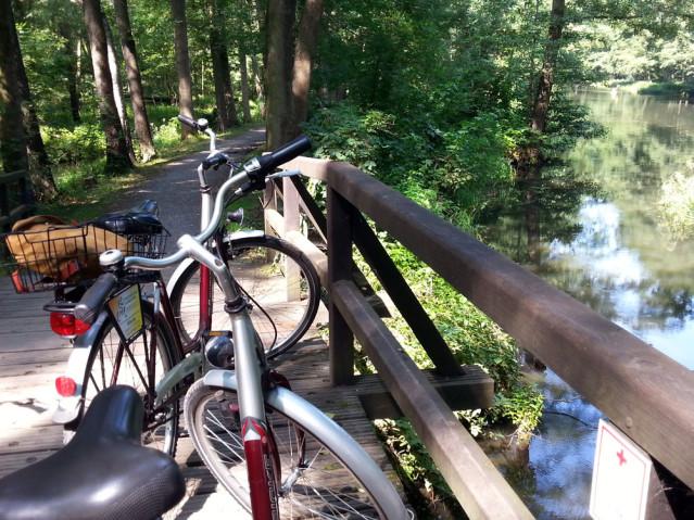 Fahrrad Spreewald