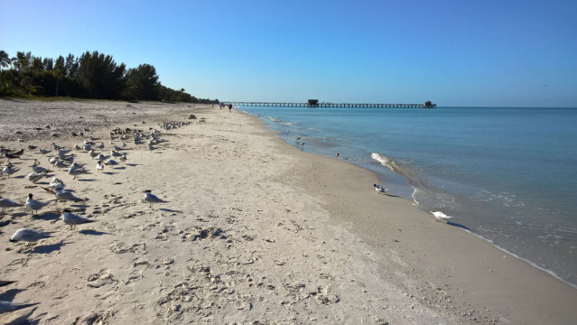 Strand Naples Florida