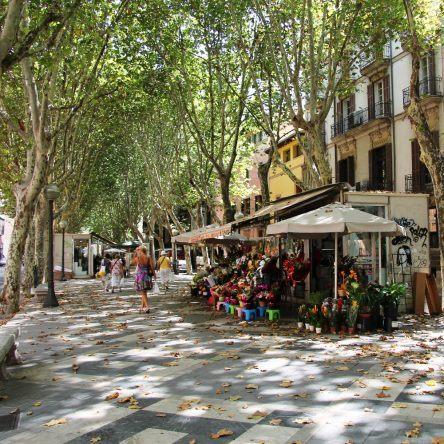 Boulevard Palma de Mallorca