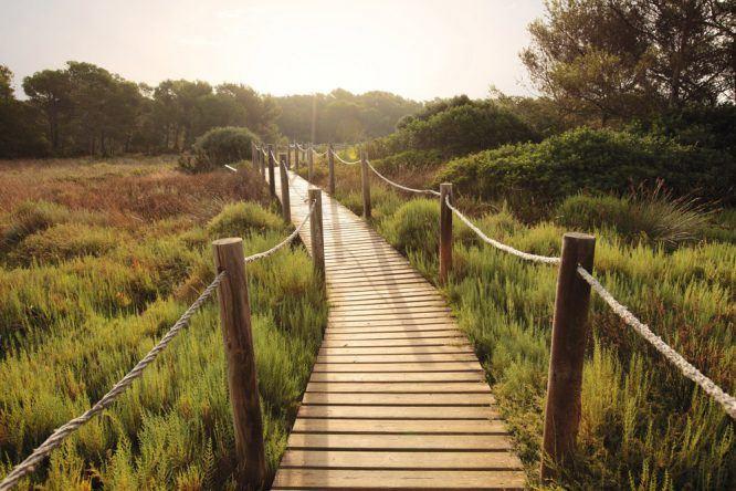 Menorca Es Grau Nationalpark
