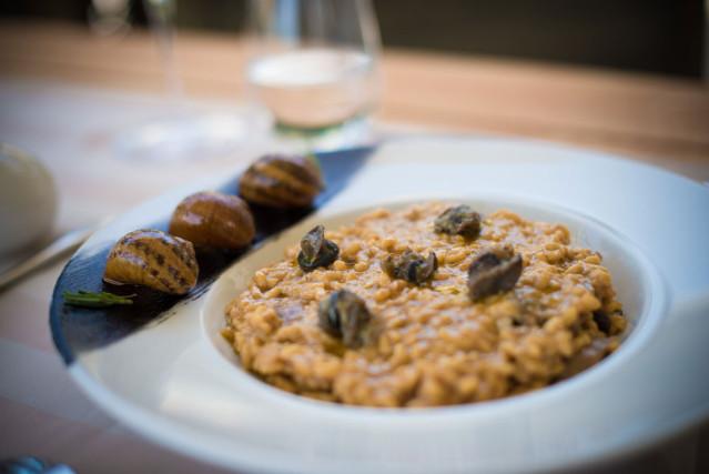 Pilz-Risotto mit Schnecken und Trüffel