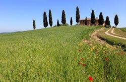 Wunderschöne Landschaft erwartet euch in der Toskana