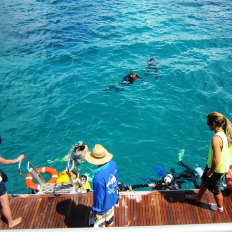 Sandinsel Great Barrier Reef