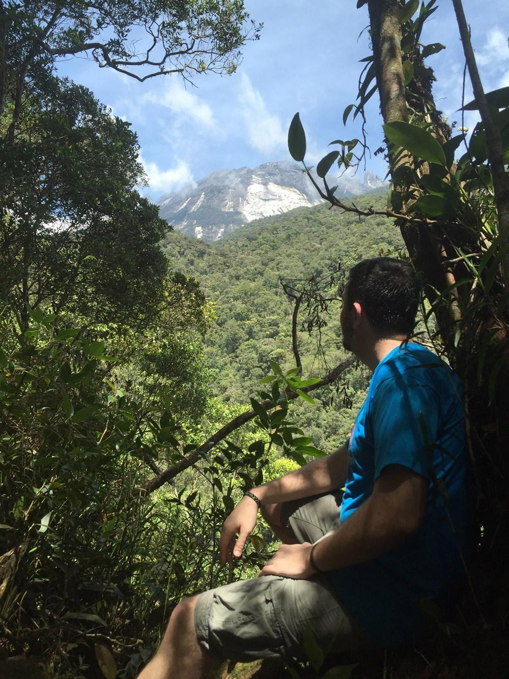 Nur selten gelingt einem dabei der Blick durch das dichte Blätterdach auf die Spitze des Berges