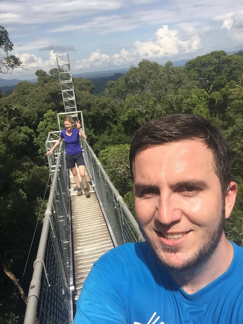 Vom 40-45 Meter hohem Canopy Walkway hat man einen atemberaubenden Rundumblick auf den Regenfald