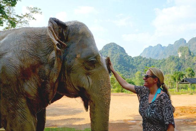 Was für ein Tier! Ich beim Elefanten schrubben