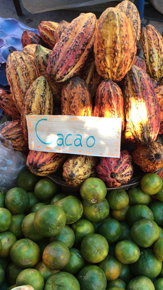 Bolivien Kakao