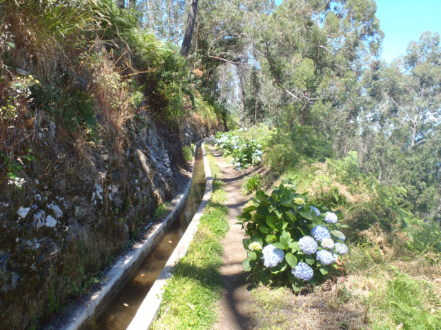 Levadas (künstliche Wasserläufe) auf Madeira