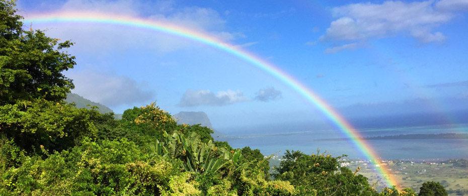 regenbogen-mauritius-feature