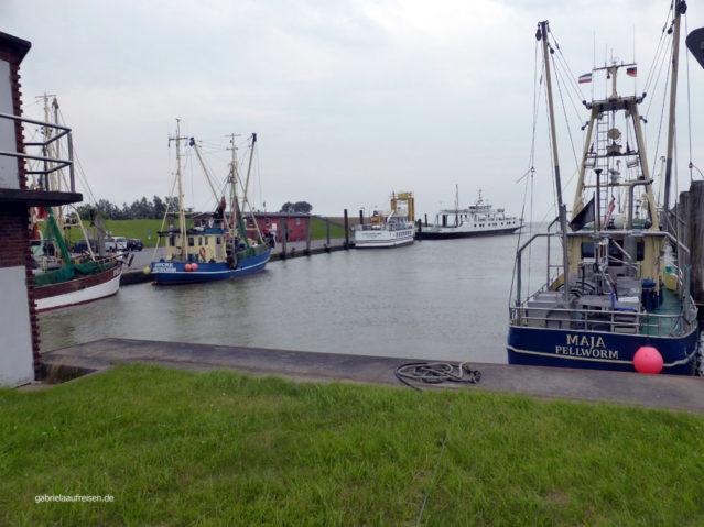 Hafen von Tammensiel im Regen