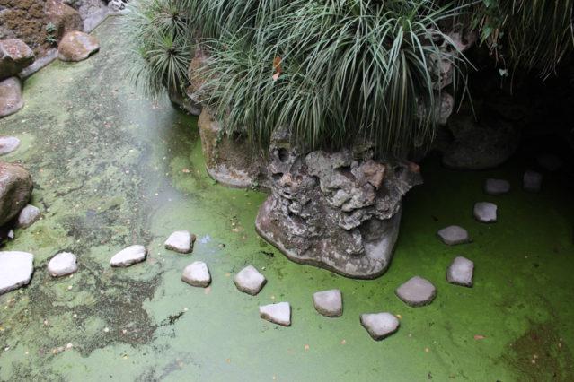 Quinta da Regaleira: Na wer traut sich? Der Steinweg führt in eine Höhle