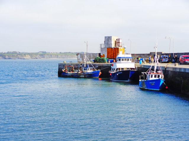 Der Hafen in Carrigaholt