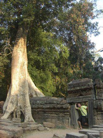 Die dichte Vegetation spendet viel Schatten bei unserer schweißtreibenden Fahrradtour durch Angkor