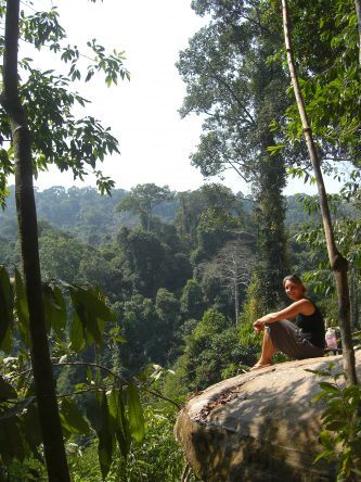 Kbal Spean: Zudem bieten einige Aussichtspunkte einen atemberaubenden Blick über den Urwald