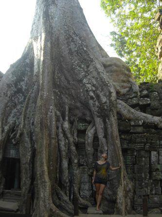 Nicht alle Tempel halten dem Gewicht der Tonnen-schweren Baumriesen stand, wie hier in Ta Prohm
