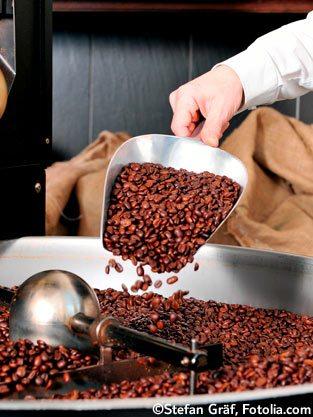 Kaffee-Verarbeitung
