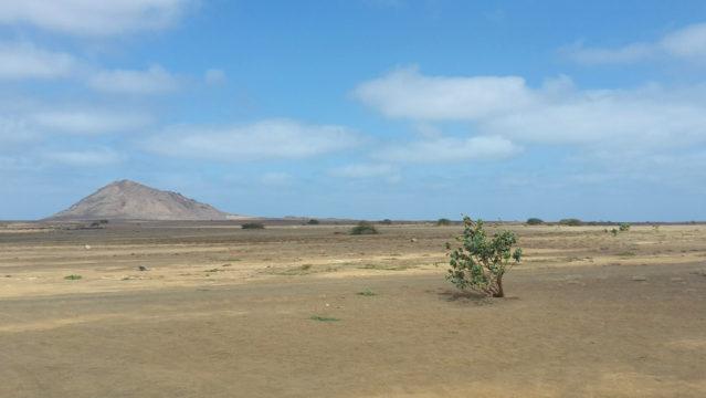 Die Terra Boa auf der Insel Sal