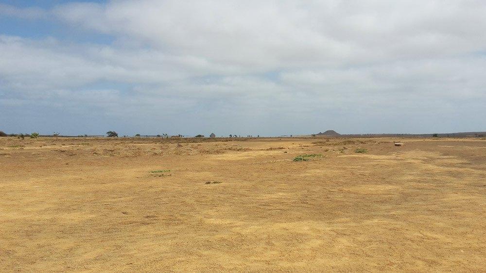 Mitten im Nowhere: Die Terra Boa