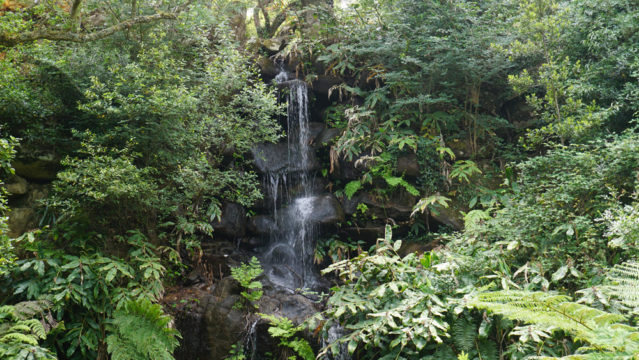 Der Wasserfall im Parque de Monserrate